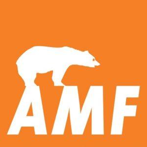 AMF álmennyezeti lapok